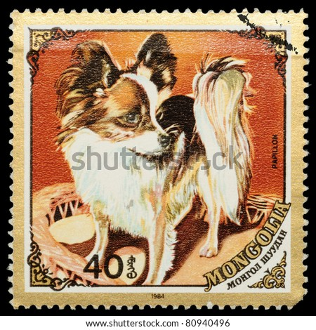 "MONGOLIA - CIRCA 1984: A Stamp printed in MONGOLIA shows image of a Papillon from the series ""Dogs"", circa 1984"