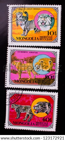MONGOLIA - CIRCA 1979: A stamp printed in Mongolia shows three kinds of different wild cats , circa 1979. - stock photo