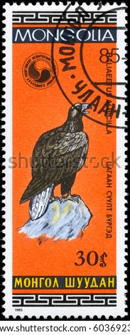 """MONGOLIA - CIRCA 1985: A Stamp shows image of a White-tailed Eagle with the inscription """"Haliaeetus albicilla"""" from the series """"Birds"""", circa 1985"""