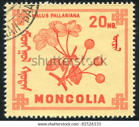 MONGOLIA - CIRCA 1968: stamp printed by Mongolia, shows Berries, Malus, circa 1968