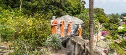 Monk buddhist walking on mountain Sri Lanka