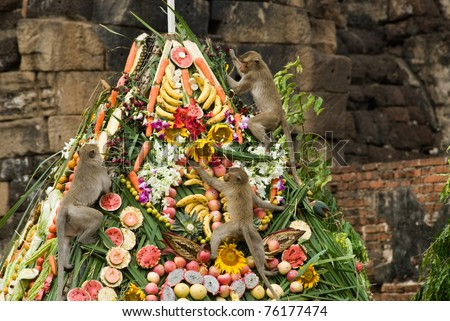 Monkey buffet festival in Lopburi city , Thailand.