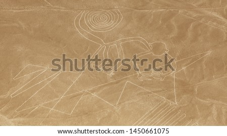 Monkey geoglyph, Nazca or Nasca mysterious lines and geoglyphs aerial view, landmark in Peru