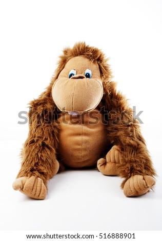Monkey plush toy in studio. brown monkey,cute monkey,fake monkey,plush monkey,toy monkey,chimpanzee,jocko,gorilla,anthropoid,hominids,monkey toy,monkey plush,monkey with white background #516888901