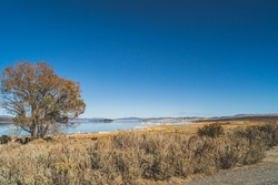 Mono lake, California in Autumn on sunny day with clear blue sky and tufa formations. In Sierra Nevada mountains. Ancient lake millions of years old.
