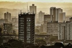 Monochromatic urban landscape of Recife city, in Pernambuco
