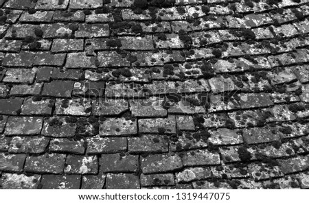 monochrome image of old chipped roof tiles with moss in an overlapping pattern #1319447075
