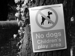 Monochrome no dogs childrens play area warning sign mounted on tree trunk