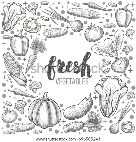 Monochrome sketch style set of vegetables icons. Eco organic fresh template with vegetables for the decoration of menu.