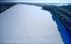 Monotonous view of a white snow covered field without structural features next to a forest strip, aerial photo