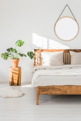 Monstera plant on a tree trunk nightstand and a round mirror above the bed, on a white wall in a sunlit bedroom interior with wooden furniture
