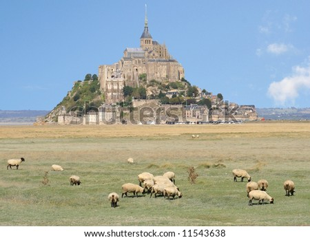 Mont Saint Michel Abbey and sheep, France