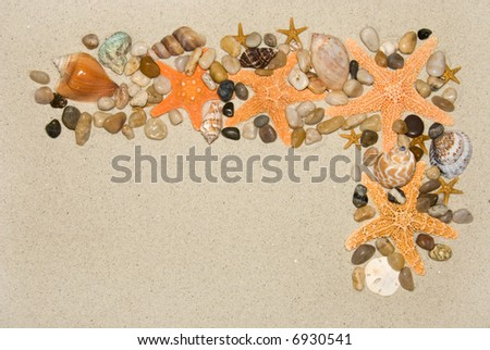 Montage sea life frame on sand including starfish, cowries, whelk and bubble shells to use as an abstract frame for any aquatic need