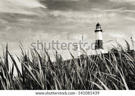 Montauk Lighthouse and sea grass. Black and white