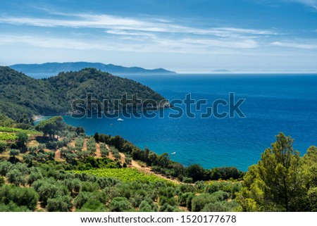 Monte Argentario, Grosseto, Tuscany, Italy: the promontory on the Tirreno sea at summer