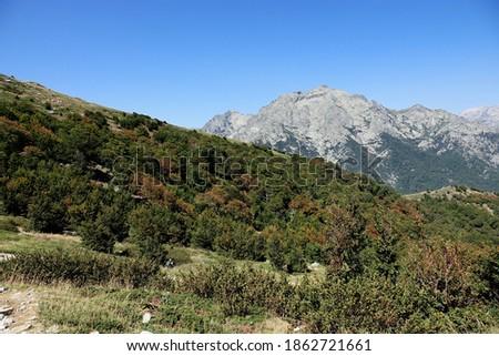 Monte d'Oro Massif in Corsica                                Foto stock ©