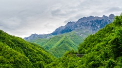 Montenegro, Green endless jungle like forest covering moraca canyon next to impressive high mountains of mountain massif coveredy by snow