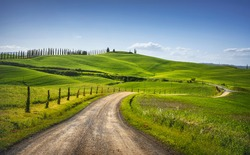 Monteroni d'Arbia, route of the via francigena. Curved road, Field and trees. Siena on background, Tuscany. Italy, Europe.