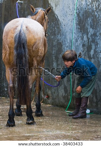 "MONTEVIDEO , URUGUAY  - APRIL 11 :  participant child wash his horse  in the Gauchos show in ""Semana Criolla"", April 11 2009  in Montevideo Uruguay."