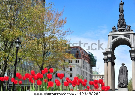 Montreal, Quebec/Canada- 05/18/2016: Colorful tulips are in bloom near the John MacDonald monument in Place du Canada in Montreal.  #1193686285