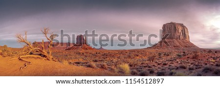 Monument valley vintage landscape view with dry tree and dramatic sky, Arizona, USA #1154512897