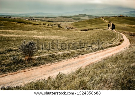 Mood fall photo of Tuscany landscape and free space for your decoration.  #1524358688