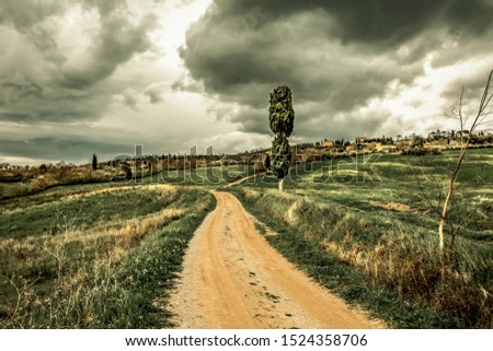 Mood fall photo of Tuscany landscape and free space for your decoration.  #1524358706