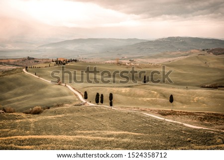 Mood fall photo of Tuscany landscape and free space for your decoration.  #1524358712