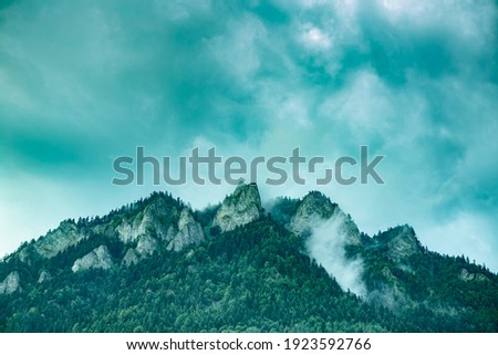 Moody mountain landscape with forest and fog. Hazy Three Crowns (Trzy Korony) mountain peak in Pieniny, Poland. Background with free copy (text) space. Zdjęcia stock ©