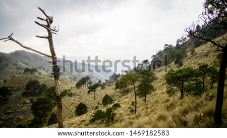 Moody Mountain view at the Ajusco volcano #1469182583