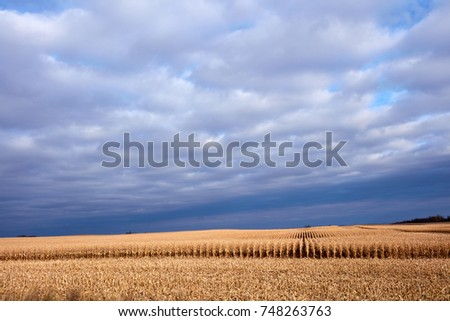 moody scenic agricultural...