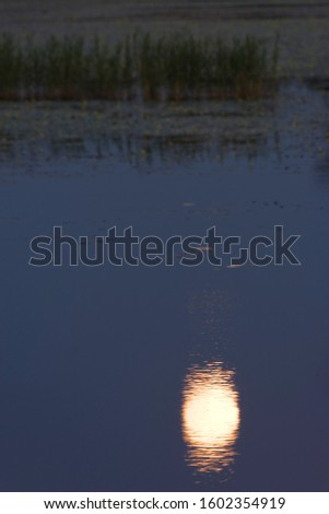 Moon and twilight on the lake