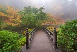 Moon Bridge One Foggy Morning in Colorful Autumn Season at Portland Japanese Garden