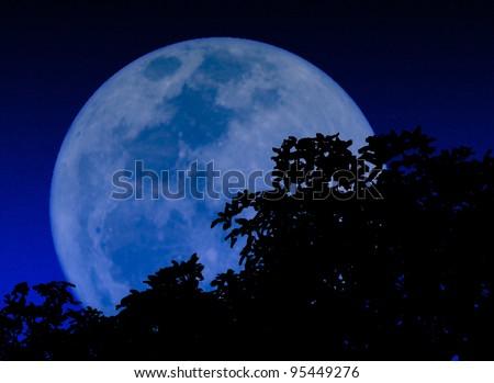 moon in the dark night