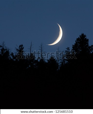 Moon nightscape, waxing / waning crescent moon phase with silhouette forest pine trees and midnight blue sky cresent