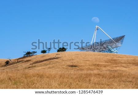 Moon Rising at the Stanford Dish in Stanford, California