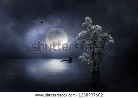 Moon shines on the dream country shining up the fisherman