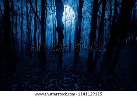 moonlight landscape in horror halloween woods #1141129115