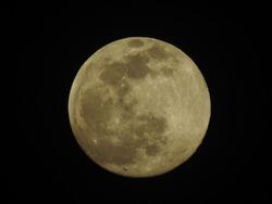 Moonlight with Full Moon at Twilight