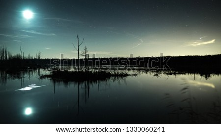 Moonlit night in the swamp. Moon reflection Foto d'archivio ©