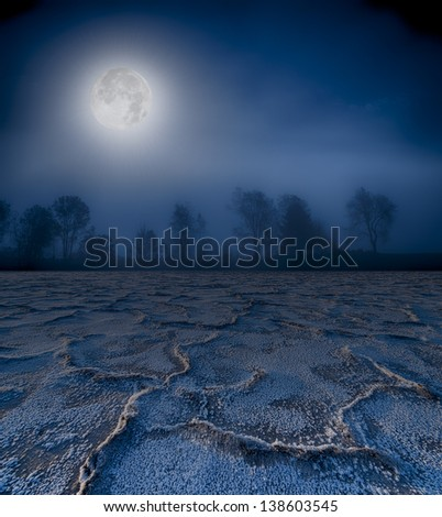 Moonrise over a foggy treeline and cracked earth.