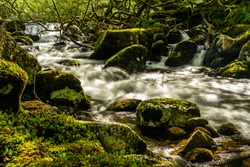 Moorland river flowing over moss covered granite rocks