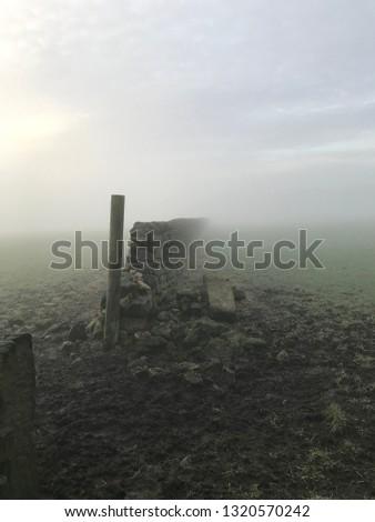 Moors in the fog #1320570242