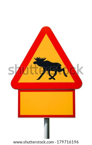 Moose warning sign isolated