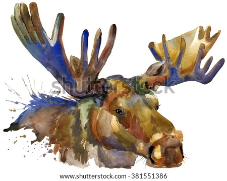 Moose watercolor illustration.