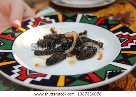 Mopane Worms Zimbabwe Delicacy