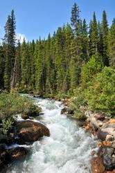 Moraine Lake Canadian Alpine Stream Vertical