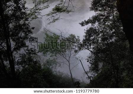 more trees near an impetuous cascade of water, the image is suggestive but also scary #1193779780
