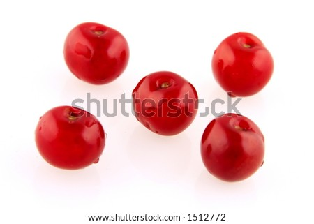 Morello cherry grid isolated on white background