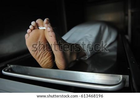 Morgue  #613468196